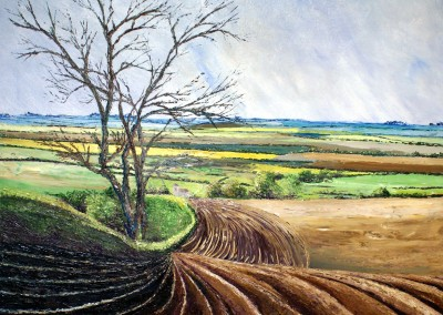 Fields of Furrows