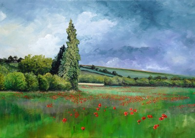 Poppy Fields, East Yorkshire