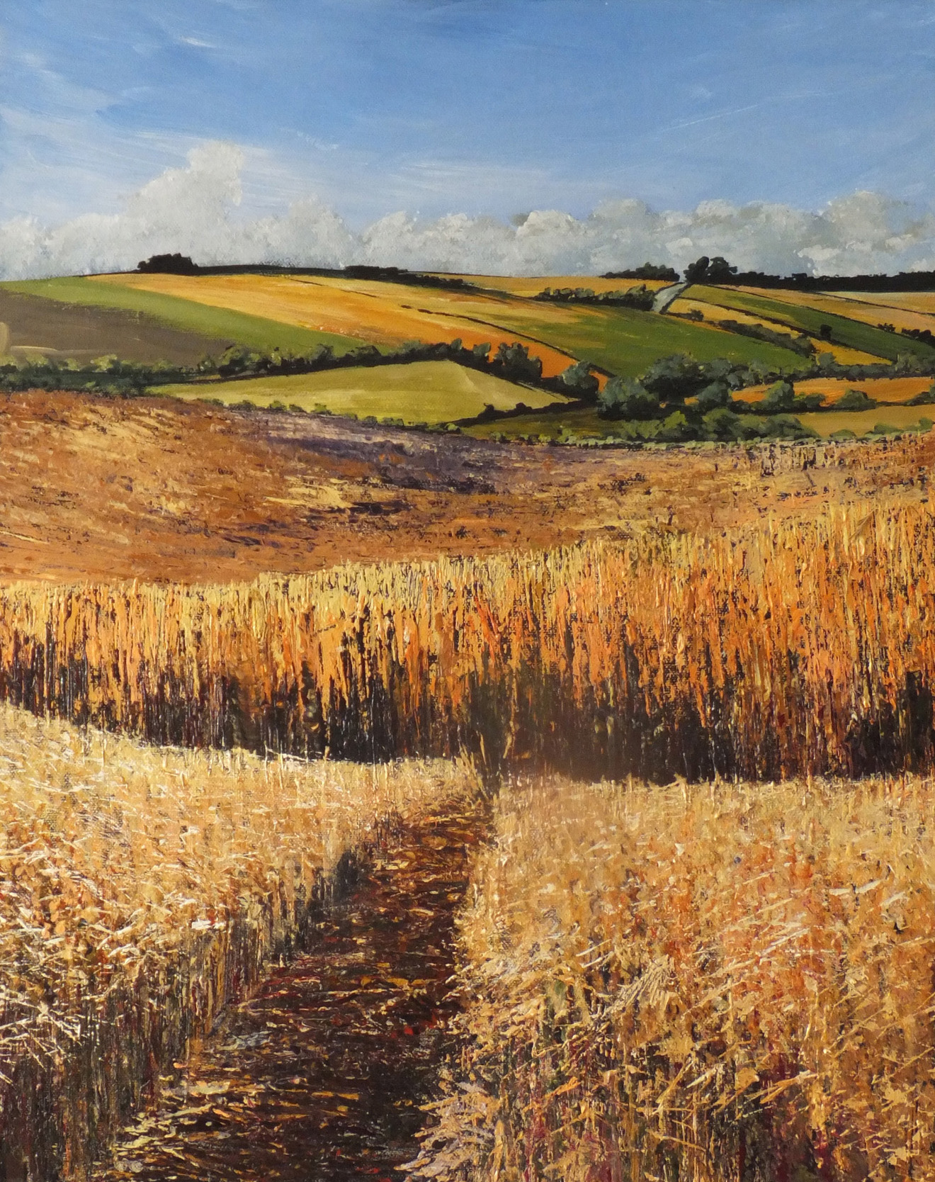 Ripe barley fields | Hogan Art