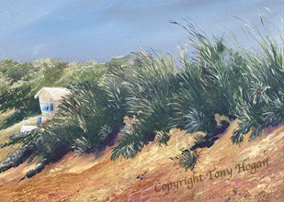 Sand Dunes of Constantine Bay