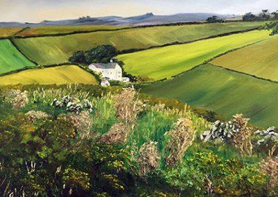 The White Farm in Cornwall