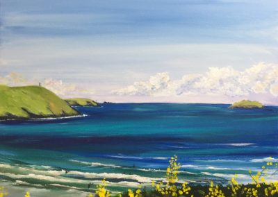 Polzeath Bay with yellow flowers